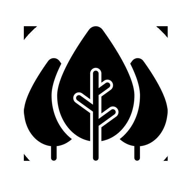 icona obiettivo foreste vaia