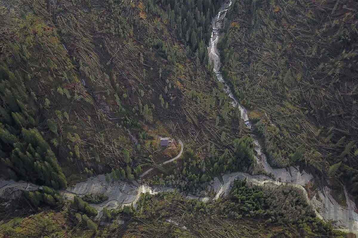 tempesta vaia foresta distrutta trentino alto adige