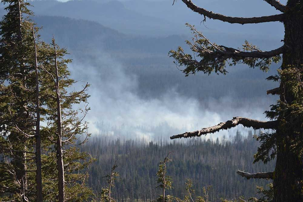 Cambiamenti climatici e disastri naturali