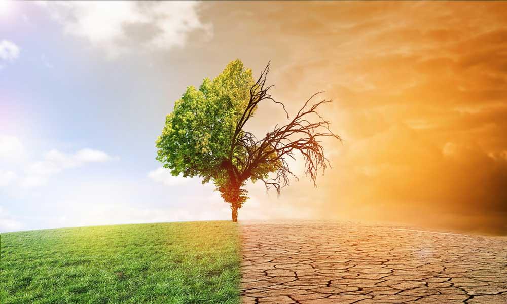 Stili di vita e cambiamenti climatici