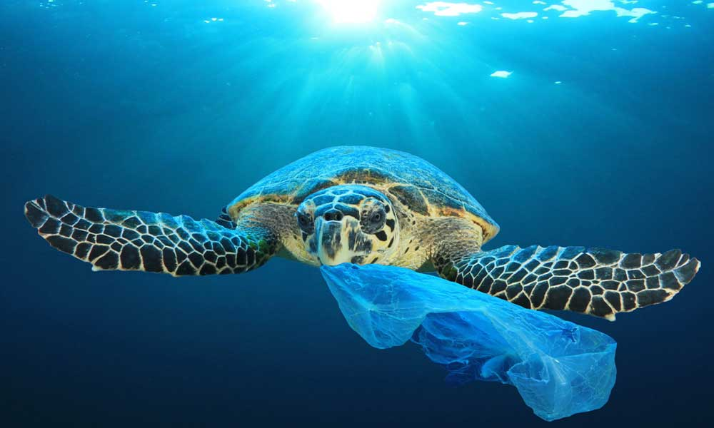 riciclare plastica oceano