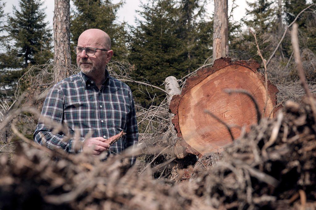 giorgio leonardelli vaia foresta