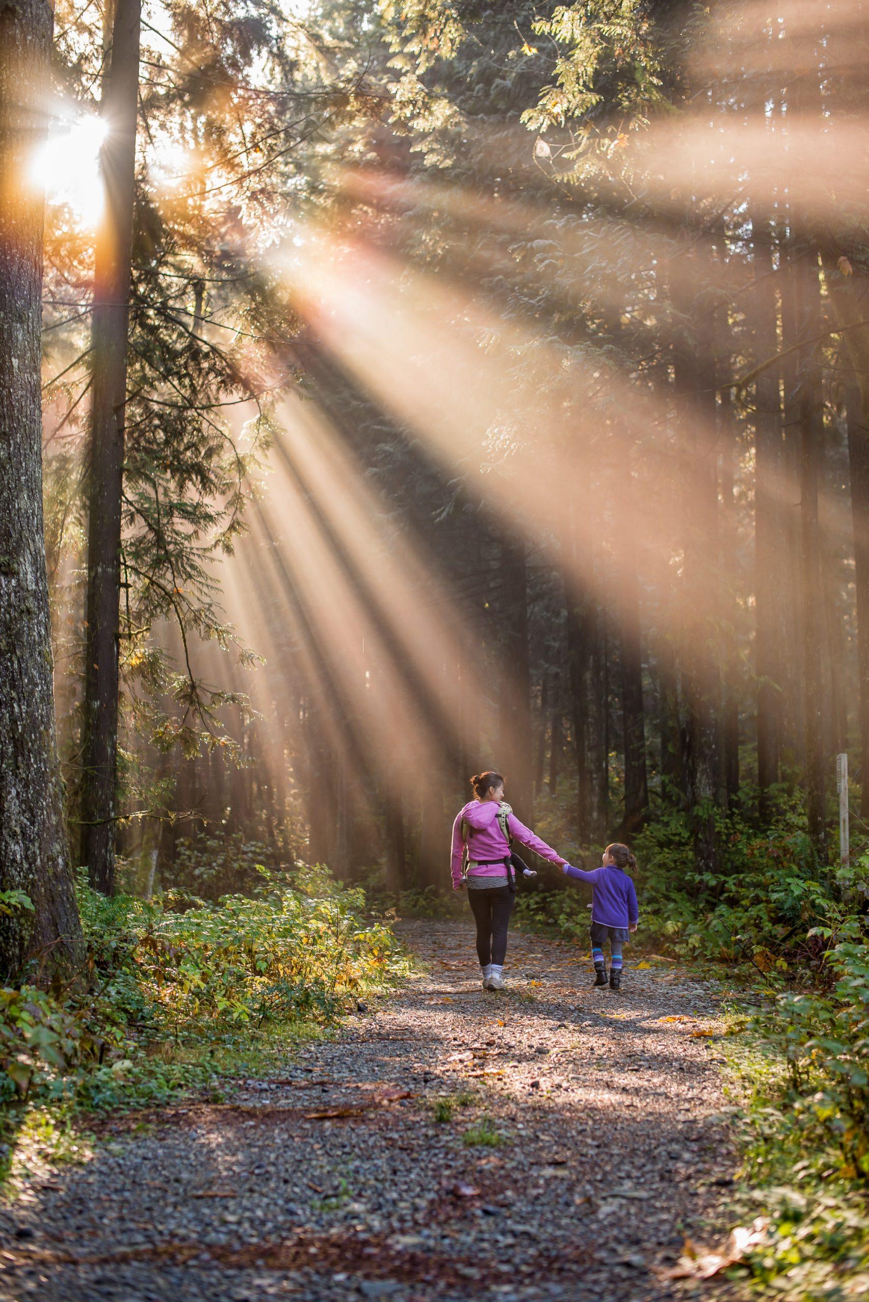 donna e bambino che camminano in un bosco