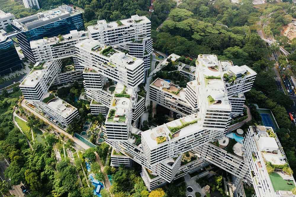 Il futuro della riforestazione urbana